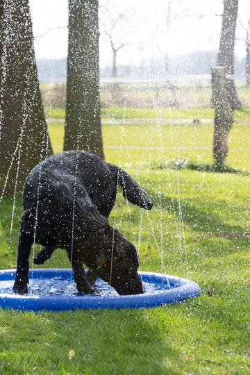 Sommer und Wasserspielzeug