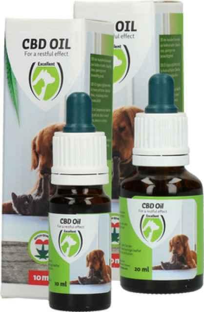 CBD Oil Hund und Katze